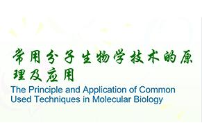 常用分子生物学技术的原理及应用