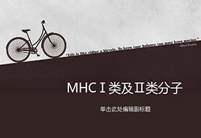 MHCⅠ类和Ⅱ类分子解读